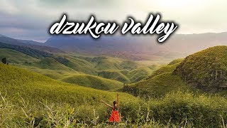 NAGALAND - DZUKOU VALLEY & JAKHAMA  | Travelling in North-East India | Indian Travel vlogs