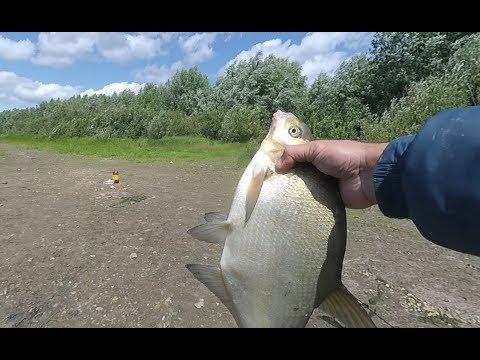 Рыбалка на ДОНКИ ! Рыбалка на Оке!