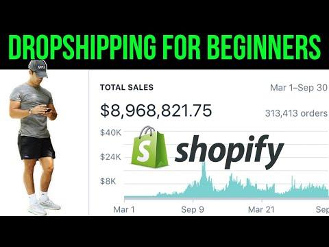 Dropshipping in 2019 - 2020   Shopify Dropshipping Beginner checklist! thumbnail