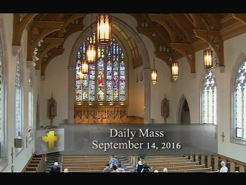 Daily Mass, Wenesday 14 September 2016