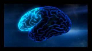 A New Brain Agenda