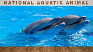National Aquatic Animal | Aquatic Animal of India | Ganges River Dolphin |