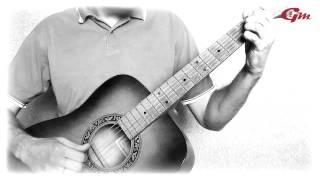 В мире животных. На гитаре. performed by Ivan Golovin