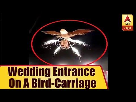 Couple`s Creative Wedding Entrance on a bird-carriage