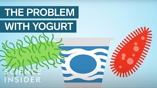 Yogurt Is More Unhealthy Than You Think