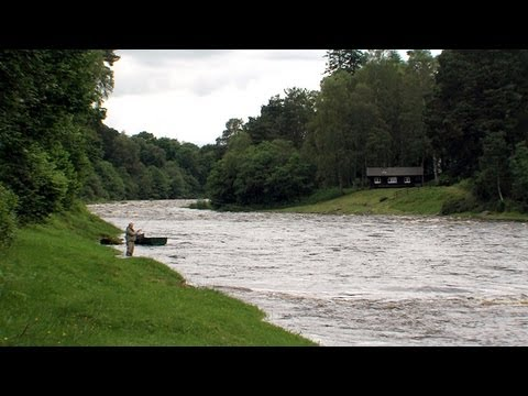 Salmon Fishing Little Blackhall & Inchmarlo Beats - Fishing TV