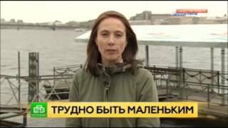 НТВ Сегодня в Санкт Петербурге  Видео ролик о нашем причале  обновлённый(, 2016-08-14T10:24:42.000Z)
