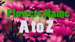 Flowers names for kids A to Z   BDKids