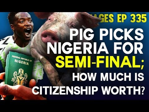 Dr. Damages Show – ep 335: Pig picks Nigeria for semi-final; How much is Nigerian citizenship worth?