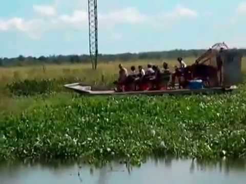 Jean Lafitte Swamp Tour Airboat Ride