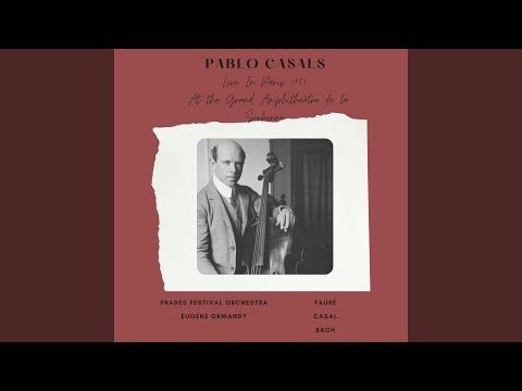 Elegie pour violoncelle et orchestre, Op. 24 : Performance