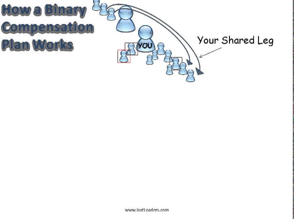 The binary system make money