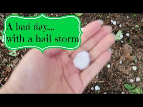A bad day with a hail storm ~ March 21 2017