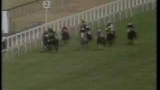 The Minstrel - 1977 King George