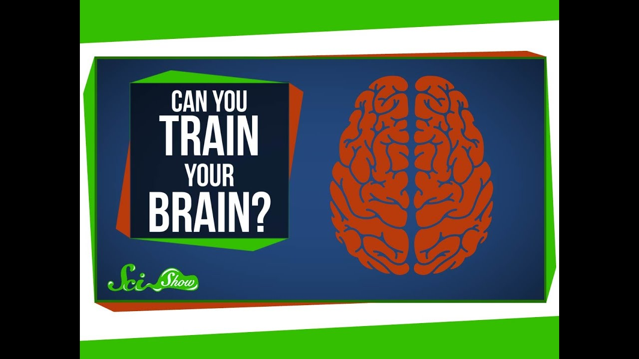 Brain Training Doesnt Make You Smarter >> Can You Really Train Your Brain Youtube
