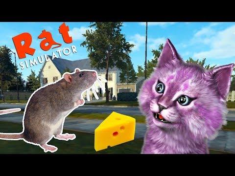 Симулятор КРЫСЫ выживание маленькой мыши в городе говорящая КОШКА ЛАНА играет детский летсплей