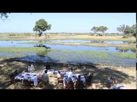 Safari Picnic in Moremi Game Reserve, Botswana