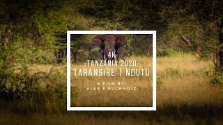 Serengeti Wildlife, Tanzania 2020 4k by Alex F Buchholz