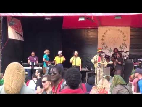 Cannabis Liberation Day 2014 Amsterdam Harry Mo & Friends