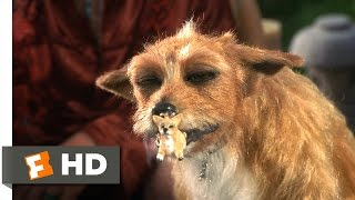Dude, Where's My Car? (1/5) Movie CLIP - Stoner Dog (2000) HD