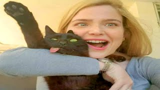 FUNNIEST CAT MEMES COMPILATION OF 2020  2021 PART 56 (FUNNY CATS)