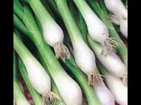 Spring Onion and its health benefits