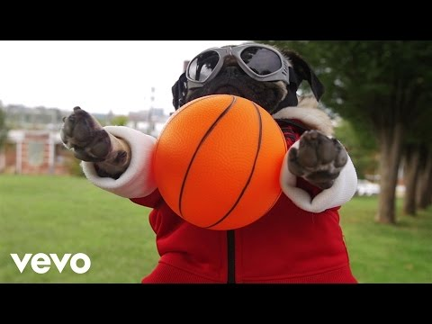 Fall Out Boy feat. Demi Lovato - Irresistible (Starring Doug The Pug)