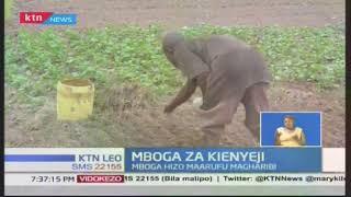 Mboga za kienyeji: umuhimu wake na jinsi zinavyotumika kudhibiti magonjwa