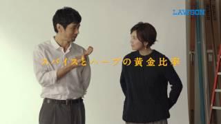 竹内結子(たけうちゆうこ)、西島秀俊(にしじまひでとし)】出演CM 黄...