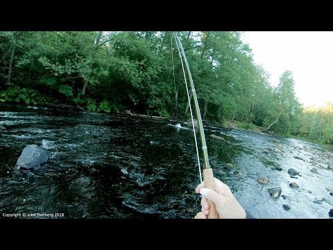 Fly Fishing For Sea Trout - Right On The Money