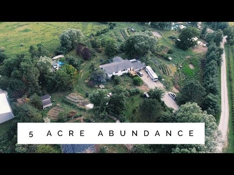 the 5 Acre Permaculture Homestead - Unbelievable Abundance