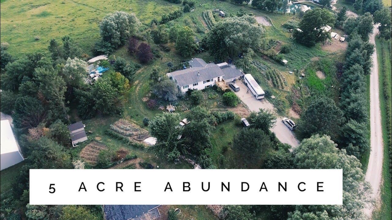 The 5 Acre Permaculture Homestead Unbelievable Abundance