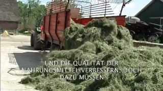Vergiftetes Land - Die Folgen des Soja-Anbaus (Killing fields) DOKU