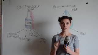 ЦТ А5 Органические и неорганические вещества