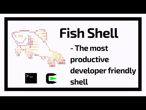 Fish Shell | The Most Productive Developer Friendly Shell | Productivity | Tech Primers