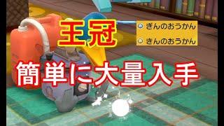 盾 ん 剣 おうか ポケモン の きん ソードシールド攻略|剣盾|ポケモン徹底攻略