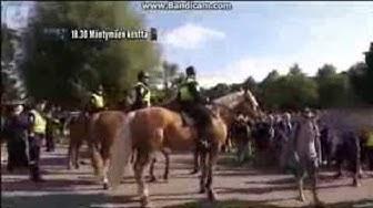 Poliisi tv: Poliisin Matkassa - Helsingin ratsupoliisi