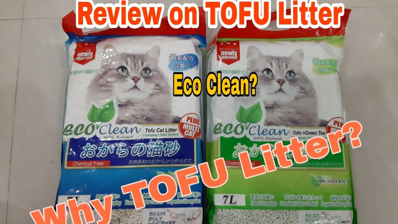 Review On Eco Clean Tofu Litter Youtube