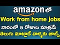 Part Time Online Work From Home jobs on AMAZON | Telugu vlogs USA | h1b life