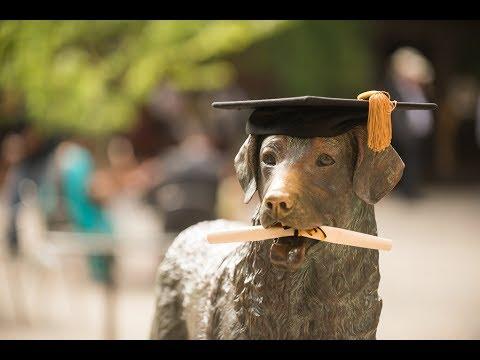 Spring 2017 Graduate Commencement Ceremony