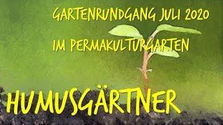 Gartenrundgang Juli 2020 im Permakulturgarten zur Selbstversorgung Teil1