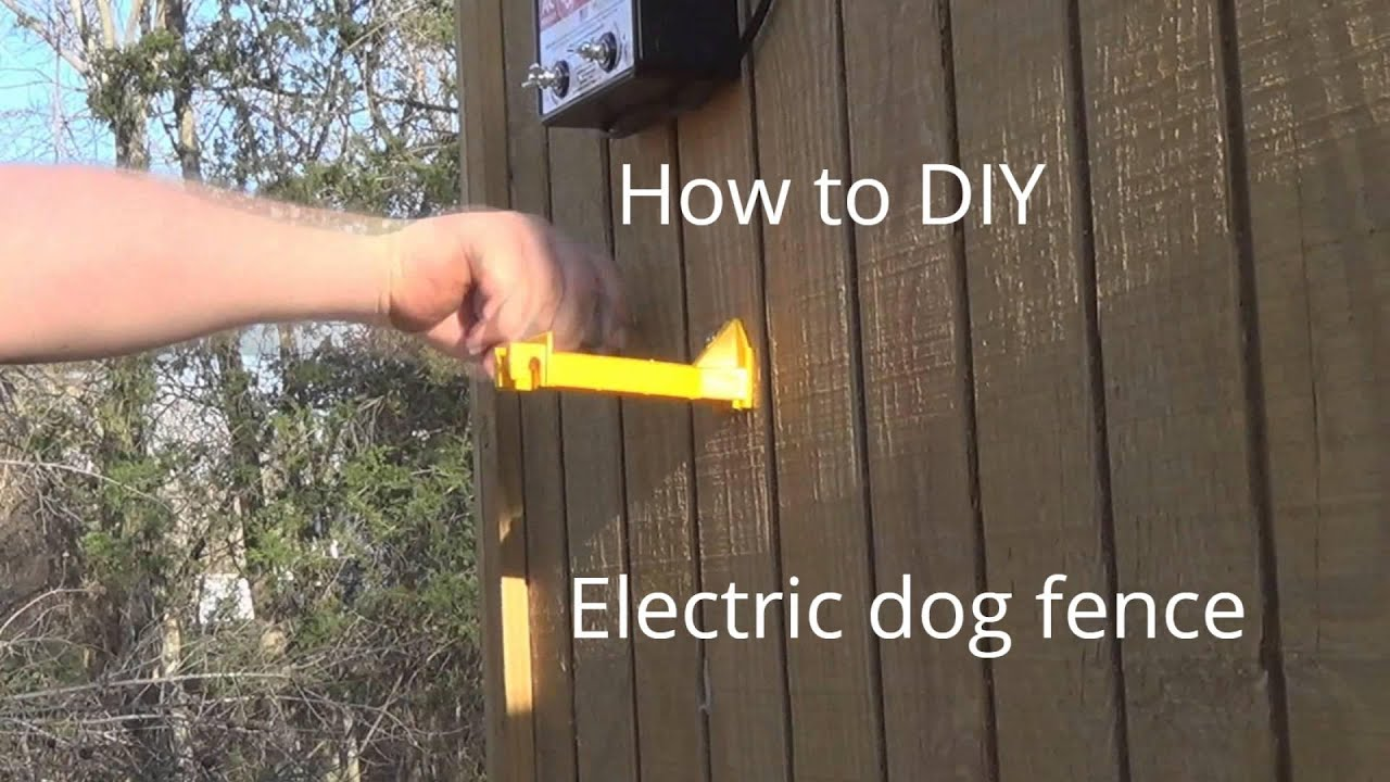 How To Make Electric Dog Fence Cheap Youtube