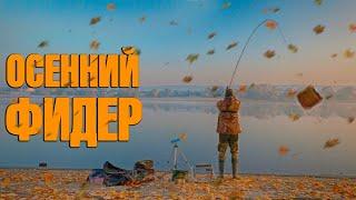 Поклевки есть Осенний фидер на туманной реке Рыбалка 2020 на фидер