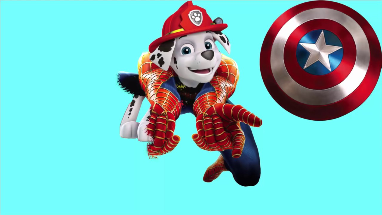 Coloring Paw Patrol Transforming Funny Video For Kids Coloriage