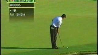 Tiger Woods impressions Golf! Hole in One