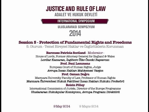 Session 5 - Protection of Fundamental Rights and Freedoms