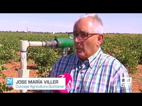 VÍDEO | Asaja denuncia una oleada de robos en el campo de La Mancha toledana