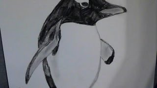 VEDA 14: Drawing a Gentoo Penguin