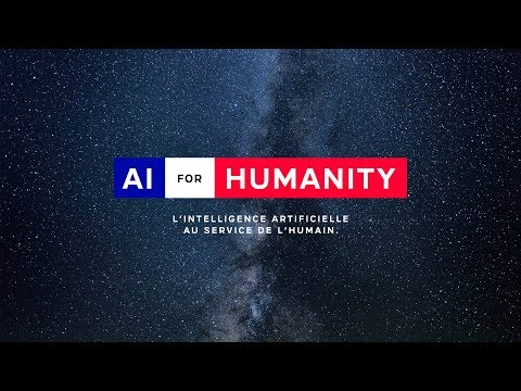 The French strategy in the field of artificial intelligence