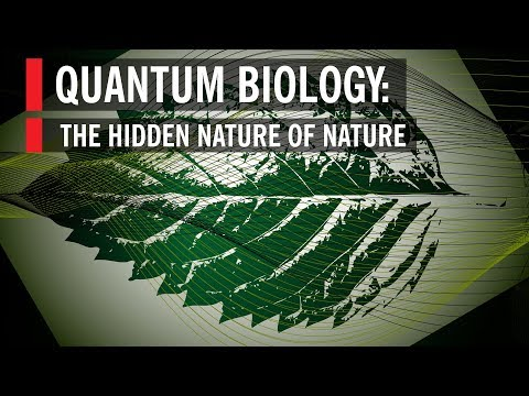 Quantum Biology: The Hidden Nature of Nature